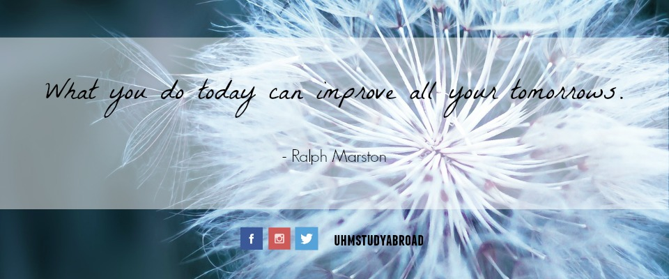 Image of a red-seeded dandelion with a quote by Ralph Marston: What you do today can improve all your tomorrows.